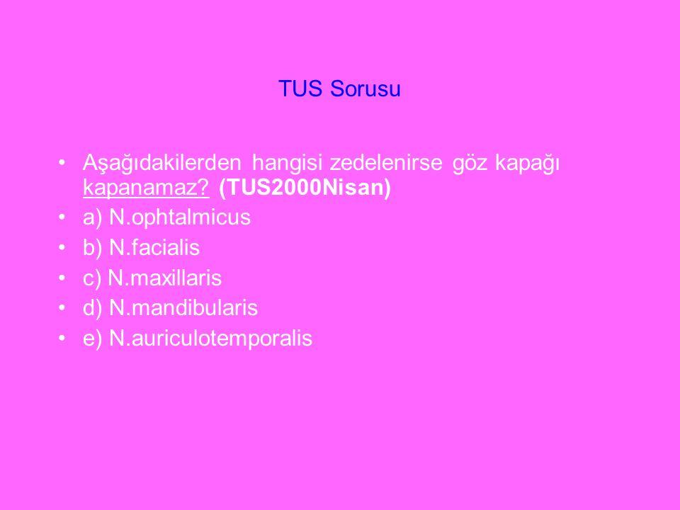 Aşağıdakilerden hangisi zedelenirse göz kapağı kapanamaz? (TUS2000Nisan) a) N.ophtalmicus b) N.facialis c) N.maxillaris d) N.mandibularis e) N.auricul