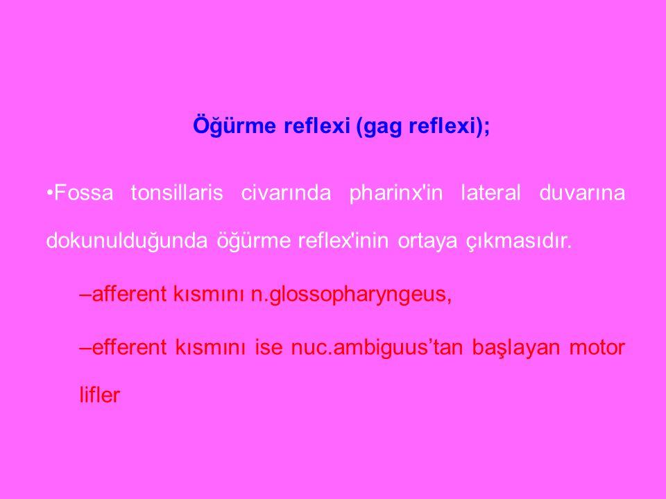 Öğürme reflexi (gag reflexi); Fossa tonsillaris civarında pharinx'in lateral duvarına dokunulduğunda öğürme reflex'inin ortaya çıkmasıdır. –afferent k