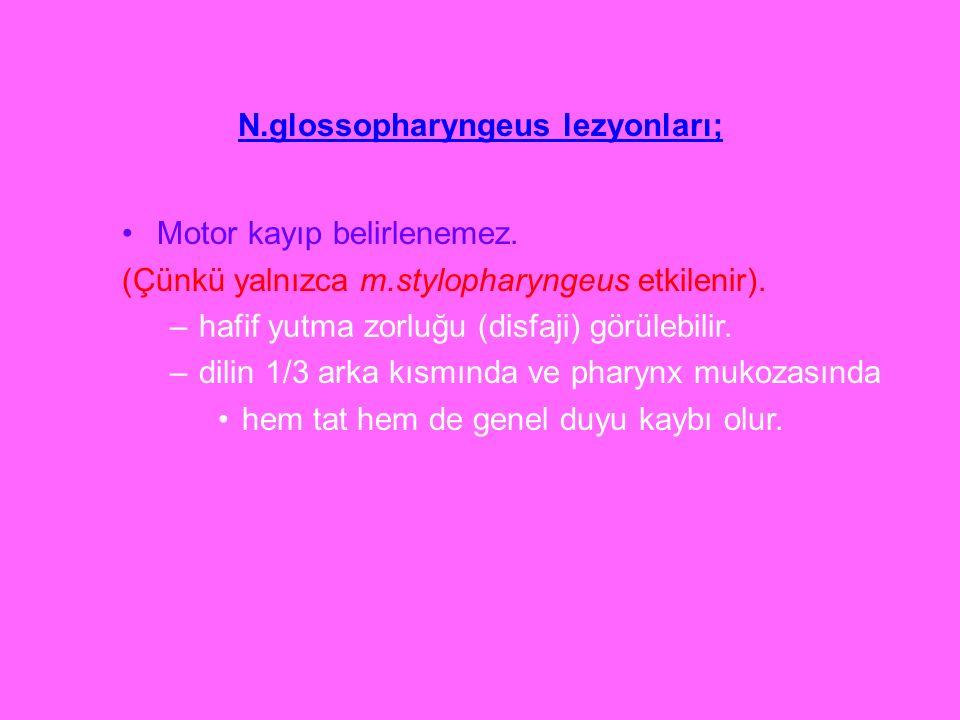 N.glossopharyngeus lezyonları; Motor kayıp belirlenemez. (Çünkü yalnızca m.stylopharyngeus etkilenir). –hafif yutma zorluğu (disfaji) görülebilir. –di