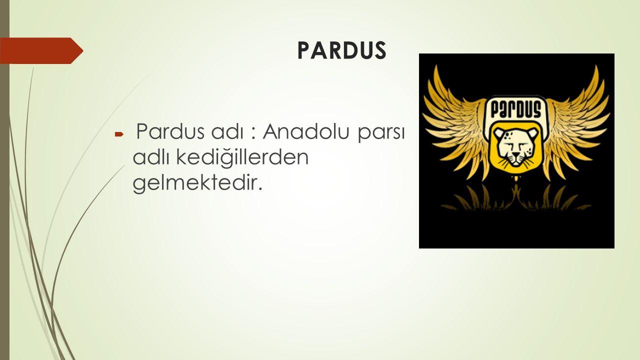 PARDUS  Pardus adı : Anadolu parsı adlı kediğillerden gelmektedir.