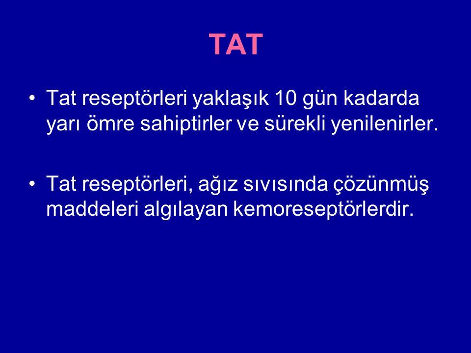 TAT Tat reseptörleri yaklaşık 10 gün kadarda yarı ömre sahiptirler ve sürekli yenilenirler.