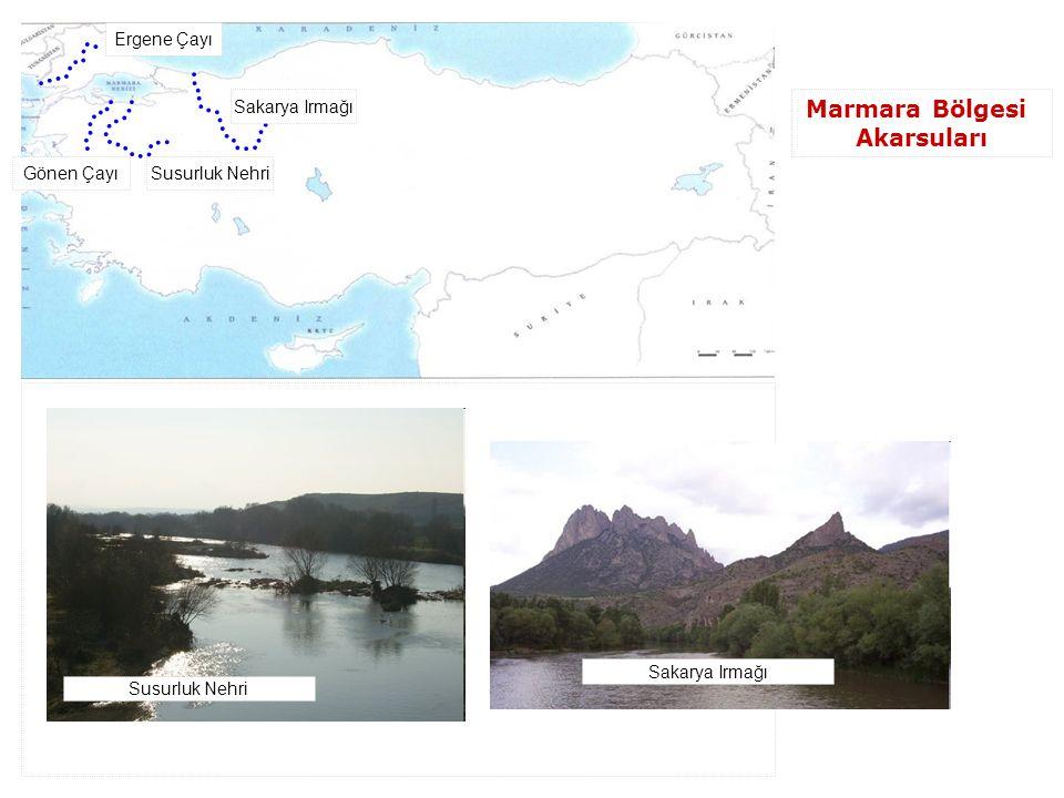 Ergene Çayı Sakarya Irmağı Susurluk NehriGönen Çayı Marmara Bölgesi Akarsuları Susurluk Nehri Sakarya Irmağı