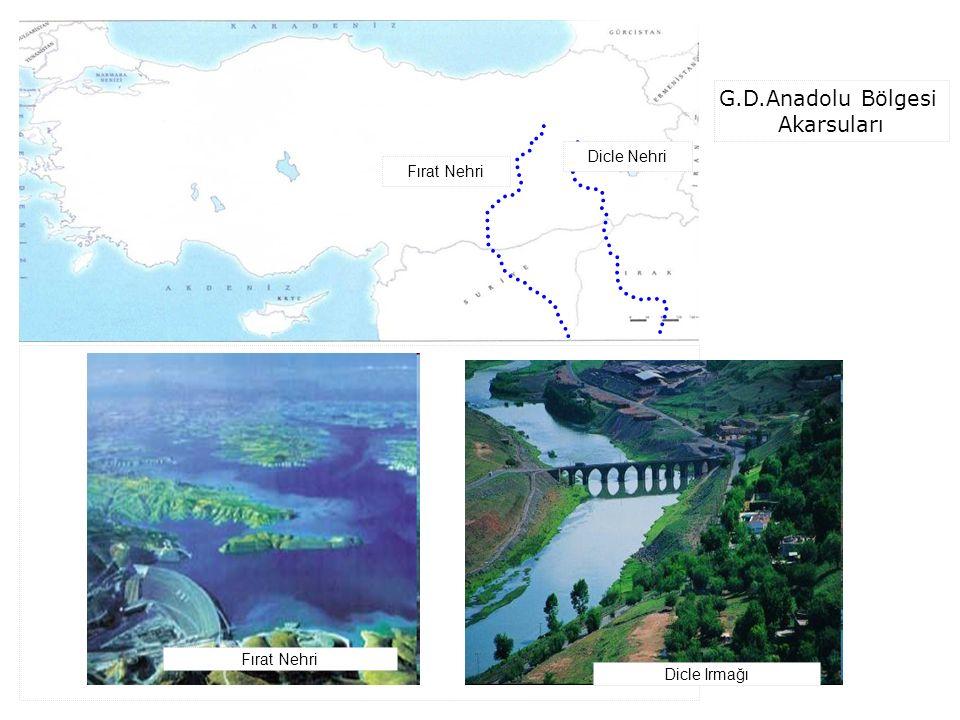 Fırat Nehri Dicle Nehri G.D.Anadolu Bölgesi Akarsuları Fırat Nehri Dicle Irmağı
