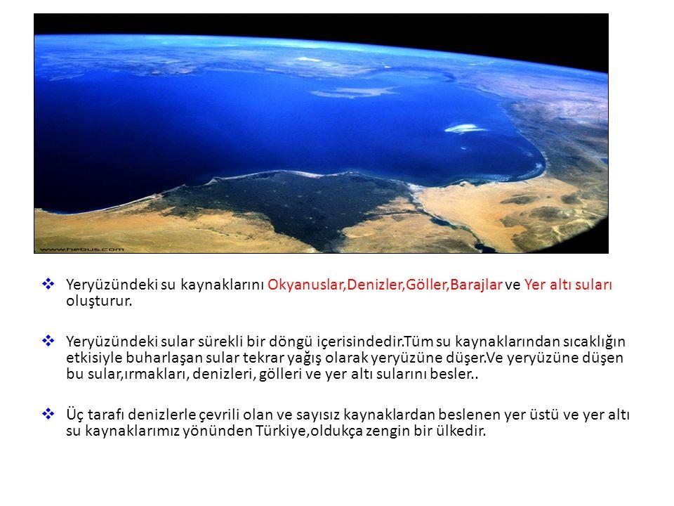 Yer Üstü Suları Okyanuslar ve Denizler Deniz ve okyanus suları, tuzlu olduğundan içme ve sulama suyu olarak kullanıma uygun değildir.