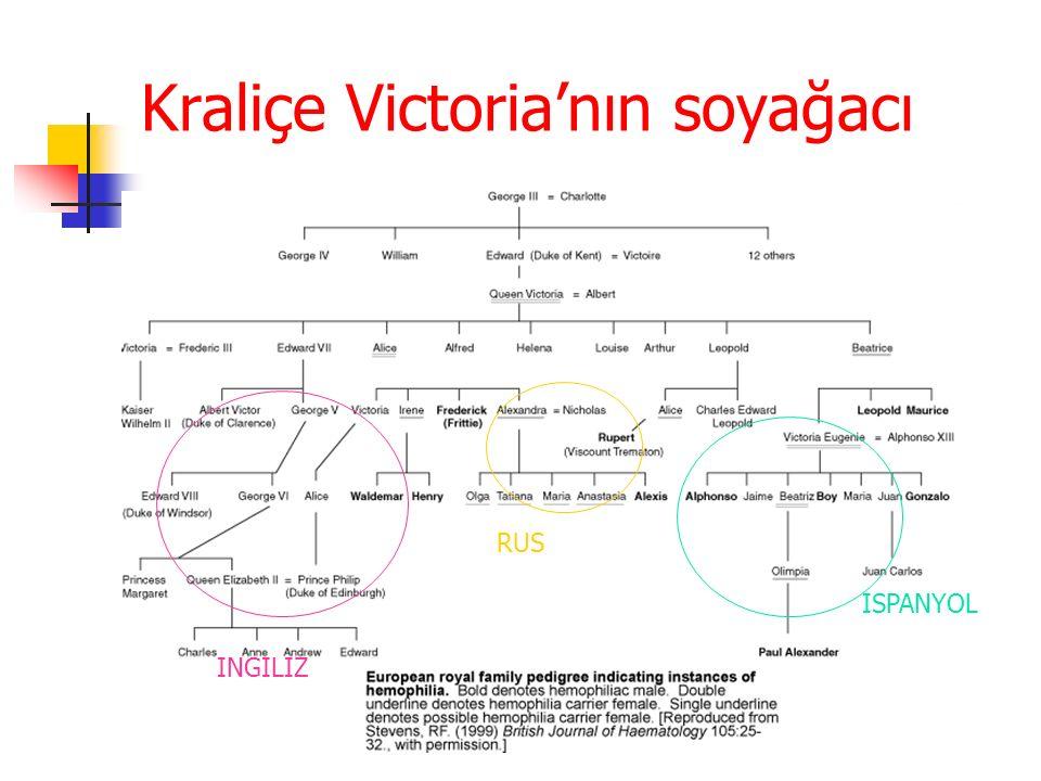 Kraliçe Victoria'nın soyağacı ISPANYOL RUS INGILIZ