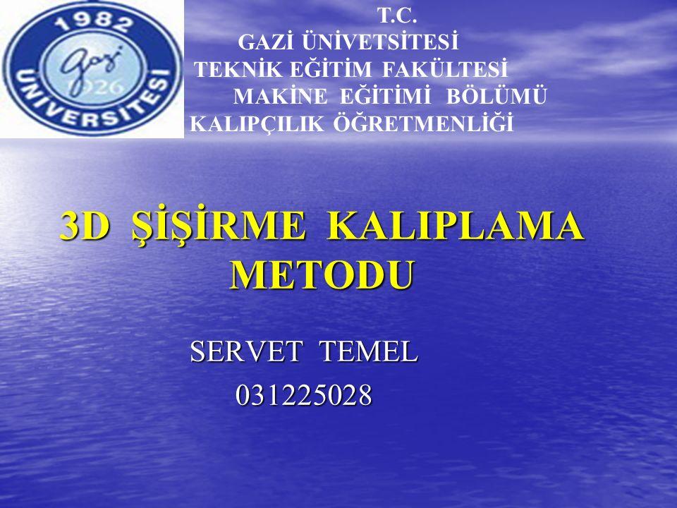 3D ŞİŞİRME KALIPLAMA METODU T.C.