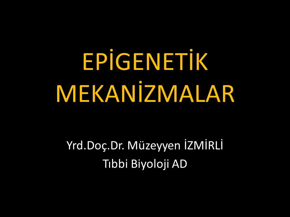 EPİGENETİK MEKANİZMALAR Yrd.Doç.Dr. Müzeyyen İZMİRLİ Tıbbi Biyoloji AD