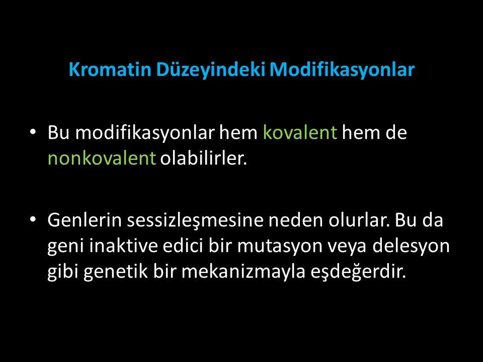 Kromatin Düzeyindeki Modifikasyonlar Bu modifikasyonlar hem kovalent hem de nonkovalent olabilirler. Genlerin sessizleşmesine neden olurlar. Bu da gen