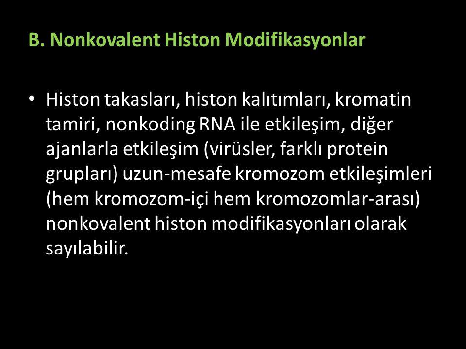 B. Nonkovalent Histon Modifikasyonlar Histon takasları, histon kalıtımları, kromatin tamiri, nonkoding RNA ile etkileşim, diğer ajanlarla etkileşim (v