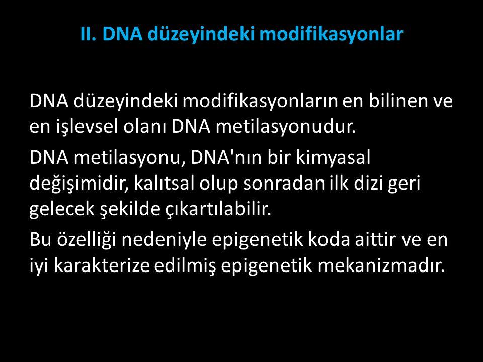 II. DNA düzeyindeki modifikasyonlar DNA düzeyindeki modifikasyonların en bilinen ve en işlevsel olanı DNA metilasyonudur. DNA metilasyonu, DNA'nın bir