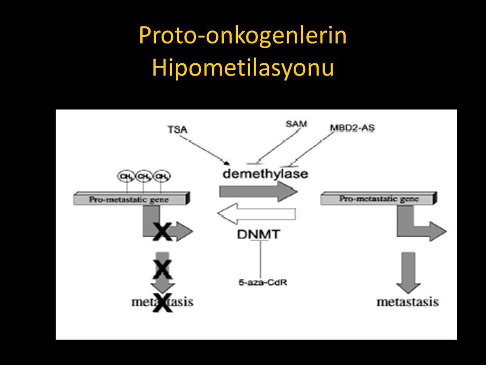Proto-onkogenlerin Hipometilasyonu