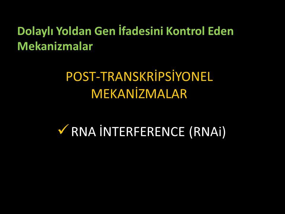 Dolaylı Yoldan Gen İfadesini Kontrol Eden Mekanizmalar POST-TRANSKRİPSİYONEL MEKANİZMALAR RNA İNTERFERENCE (RNAi)