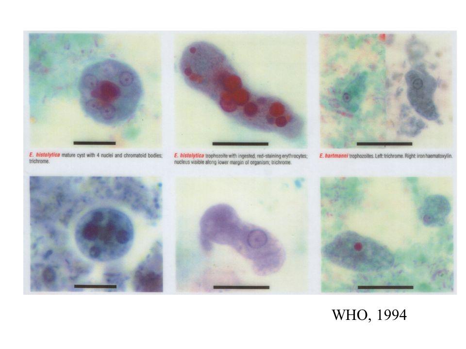 WHO, 1994