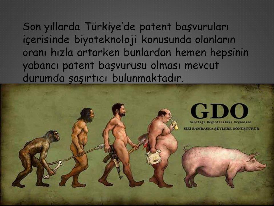 Son yıllarda Türkiye'de patent başvuruları içerisinde biyoteknoloji konusunda olanların oranı hızla artarken bunlardan hemen hepsinin yabancı patent b
