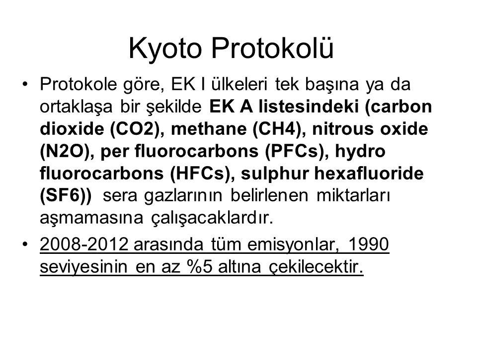 Kyoto Protokolü Protokole göre, EK I ülkeleri tek başına ya da ortaklaşa bir şekilde EK A listesindeki (carbon dioxide (CO2), methane (CH4), nitrous oxide (N2O), per fluorocarbons (PFCs), hydro fluorocarbons (HFCs), sulphur hexafluoride (SF6)) sera gazlarının belirlenen miktarları aşmamasına çalışacaklardır.