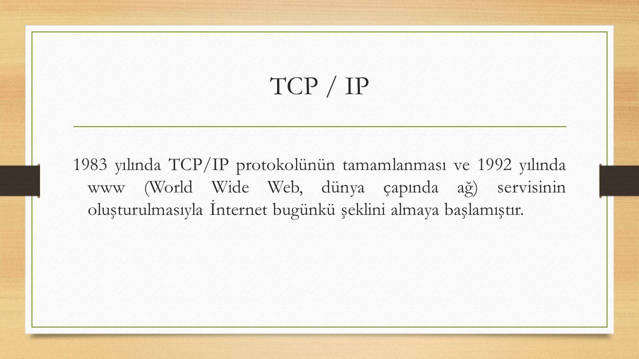 1983 yılında TCP/IP protokolünün tamamlanması ve 1992 yılında www (World Wide Web, dünya çapında ağ) servisinin oluşturulmasıyla İnternet bugünkü şeklini almaya başlamıştır.