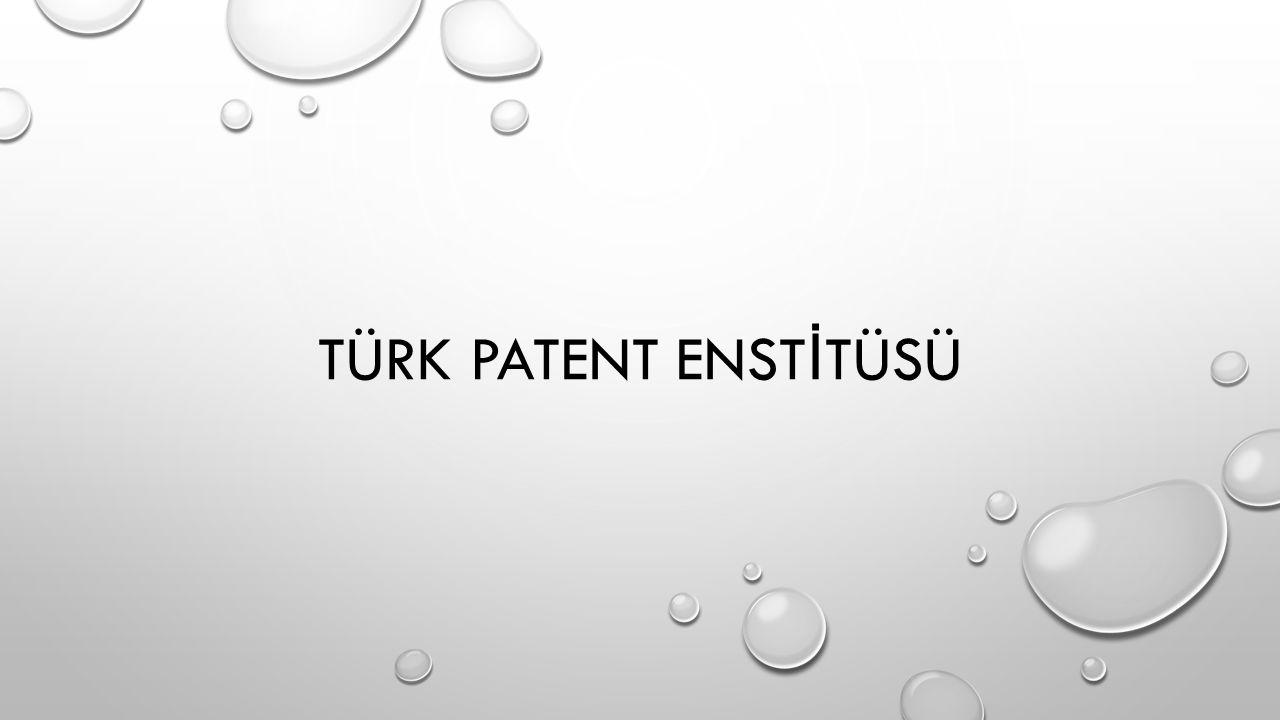TÜRK PATENT ENST İ TÜSÜ