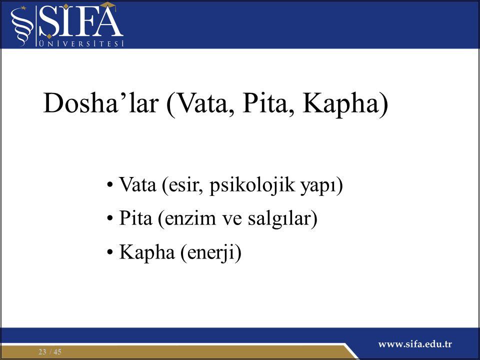 Vata (esir, psikolojik yapı) Pita (enzim ve salgılar) Kapha (enerji) Dosha'lar (Vata, Pita, Kapha) / 4523