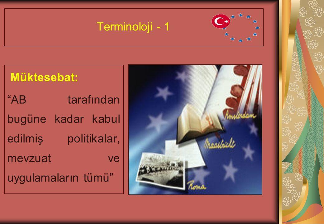 Terminoloji - 1 Müktesebat: AB tarafından bugüne kadar kabul edilmiş politikalar, mevzuat ve uygulamaların tümü