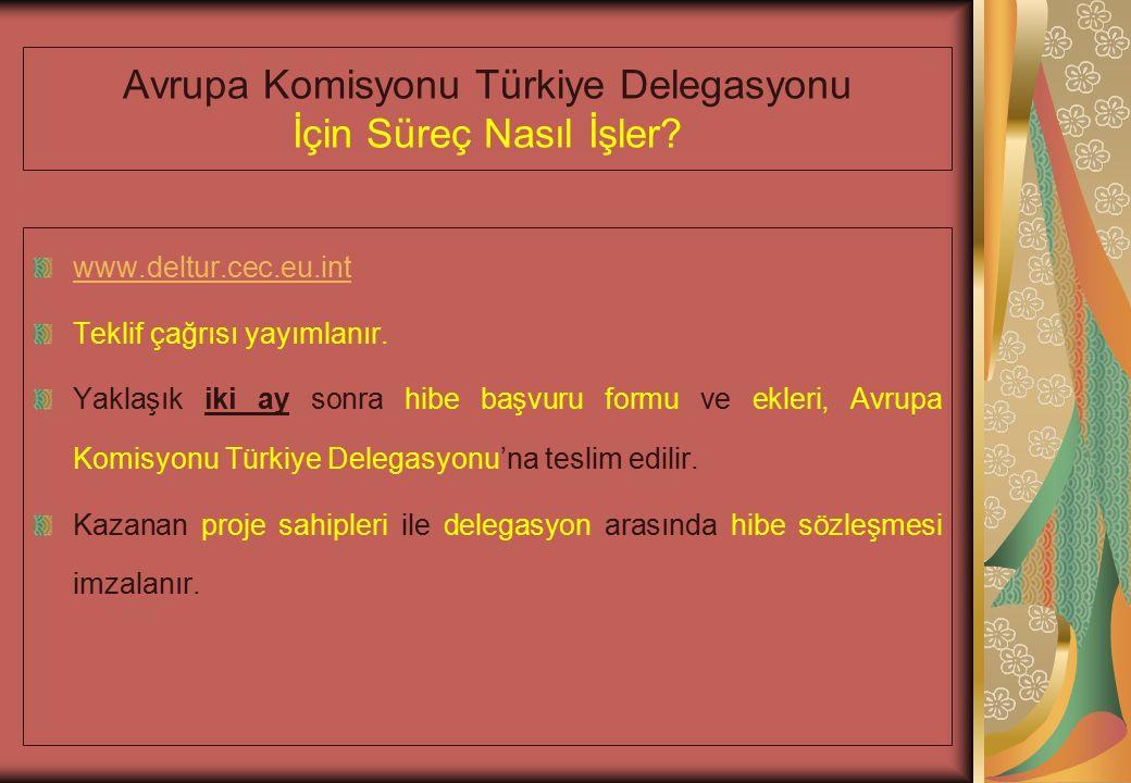 Avrupa Komisyonu Türkiye Delegasyonu İçin Süreç Nasıl İşler.