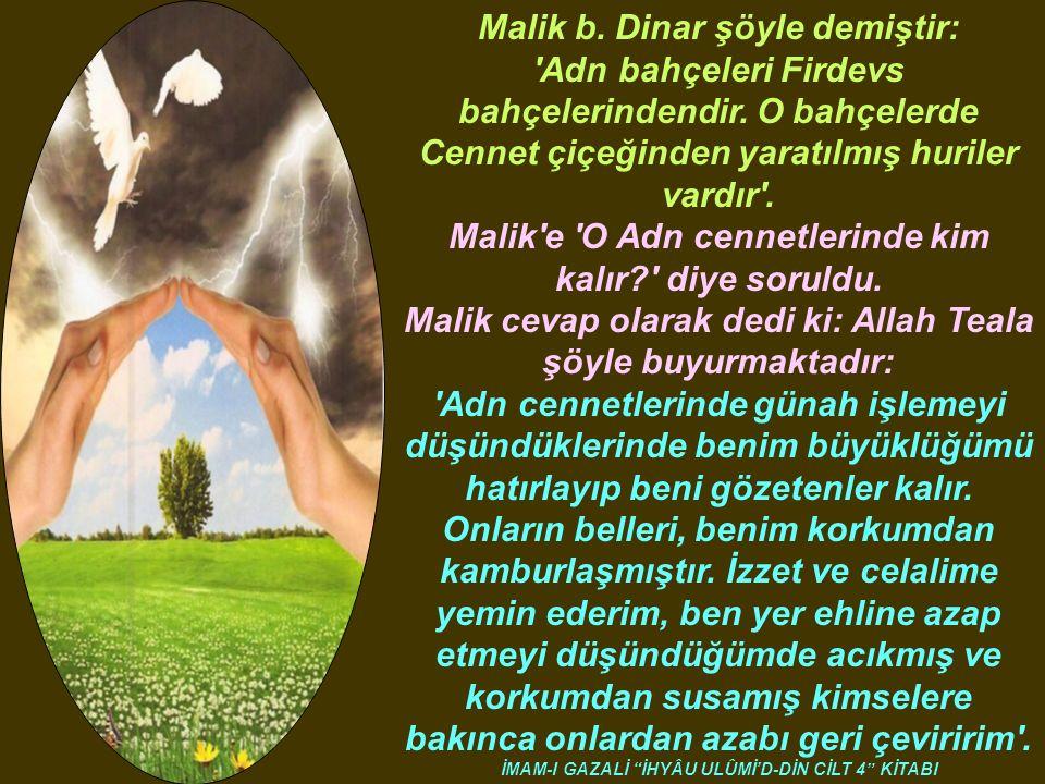 Malik b. Dinar şöyle demiştir: Adn bahçeleri Firdevs bahçelerindendir.