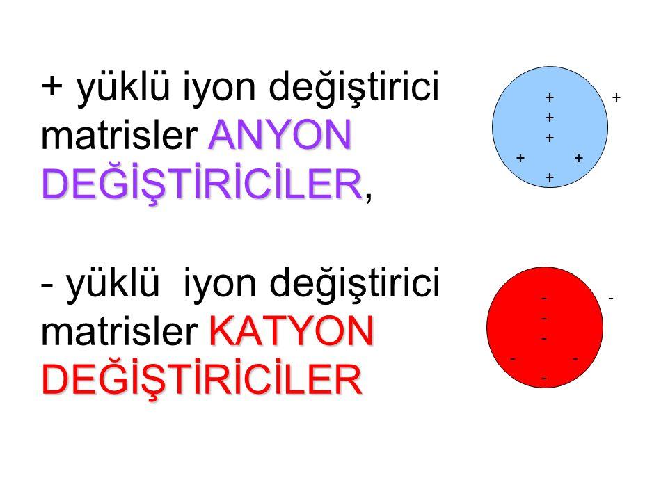 ANYON DEĞİŞTİRİCİLER KATYON DEĞİŞTİRİCİLER + yüklü iyon değiştirici matrisler ANYON DEĞİŞTİRİCİLER, - yüklü iyon değiştirici matrisler KATYON DEĞİŞTİRİCİLER + +++++++++++++++ - ---------------