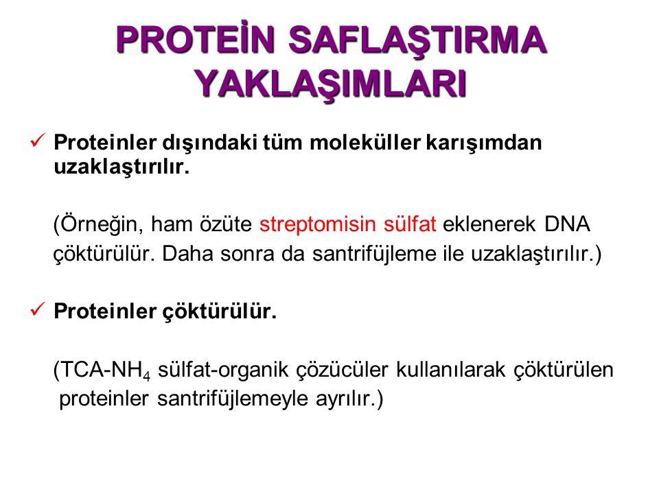 PROTEİN SAFLAŞTIRMA YAKLAŞIMLARI Proteinler dışındaki tüm moleküller karışımdan uzaklaştırılır.