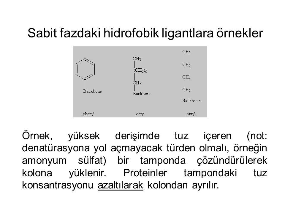 Sabit fazdaki hidrofobik ligantlara örnekler Örnek, yüksek derişimde tuz içeren (not: denatürasyona yol açmayacak türden olmalı, örneğin amonyum sülfat) bir tamponda çözündürülerek kolona yüklenir.