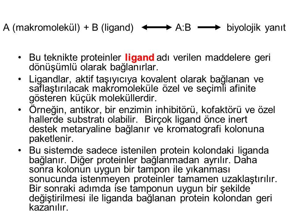 A (makromolekül) + B (ligand) A:B biyolojik yanıt ligandBu teknikte proteinler ligand adı verilen maddelere geri dönüşümlü olarak bağlanırlar.