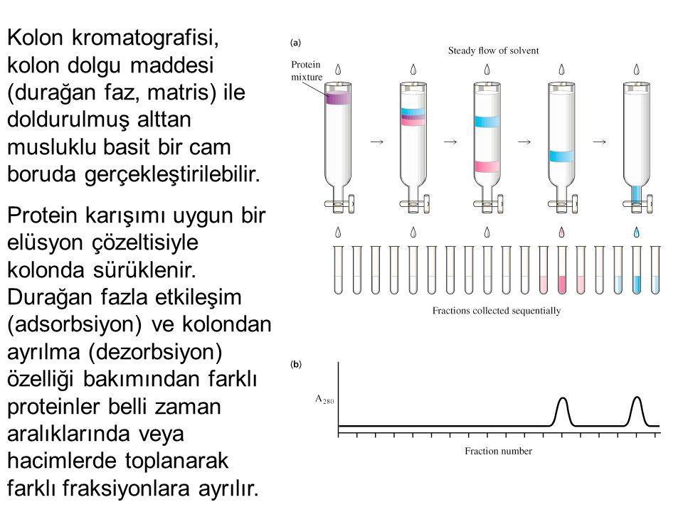 Kolon kromatografisi, kolon dolgu maddesi (durağan faz, matris) ile doldurulmuş alttan musluklu basit bir cam boruda gerçekleştirilebilir.