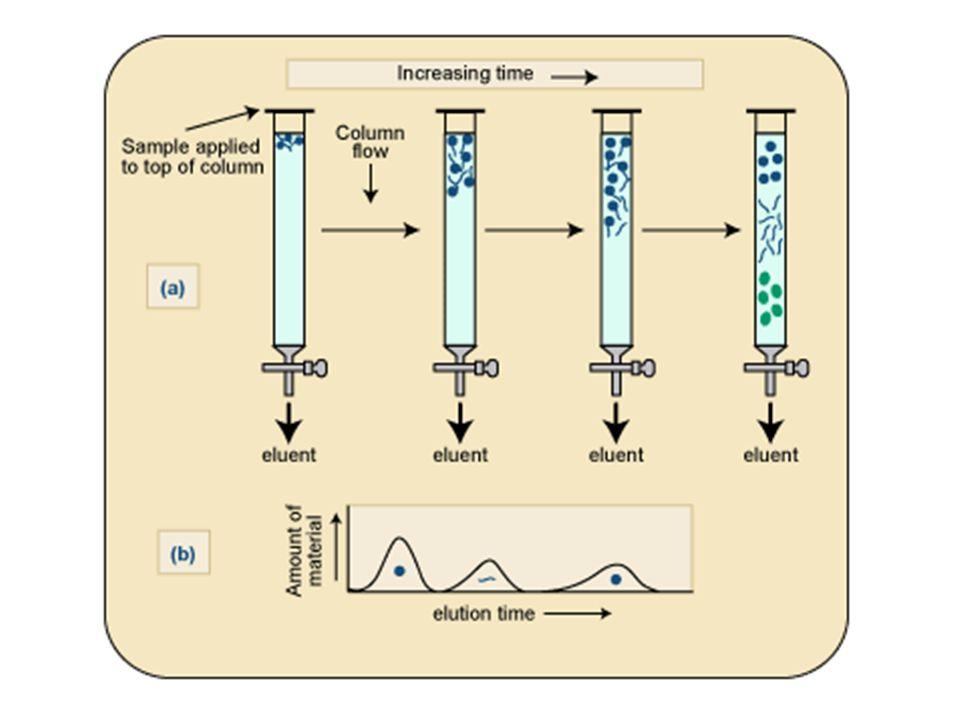 Proteinler, ya kullanılan tampon çözeltisinin pH'sının ya da tuz konsantrasyonunun değiştirilmesi ile kolondan ayrılırlar.