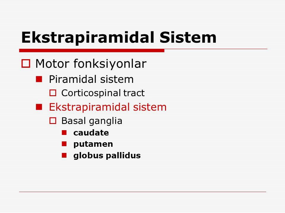 Ekstrapiramidal Sistem  Motor fonksiyonlar Piramidal sistem  Corticospinal tract Ekstrapiramidal sistem  Basal ganglia caudate putamen globus palli