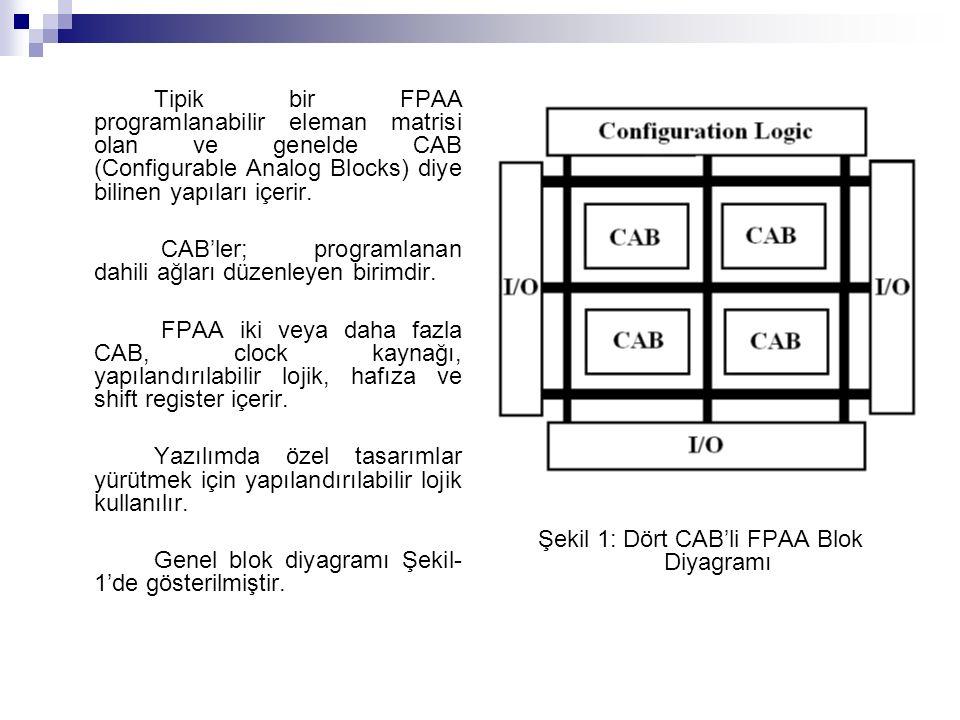 Tipik bir FPAA programlanabilir eleman matrisi olan ve genelde CAB (Configurable Analog Blocks) diye bilinen yapıları içerir.