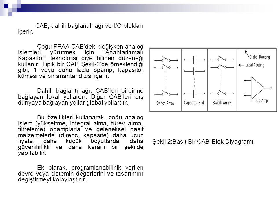 CAB, dahili bağlantılı ağı ve I/O blokları içerir.