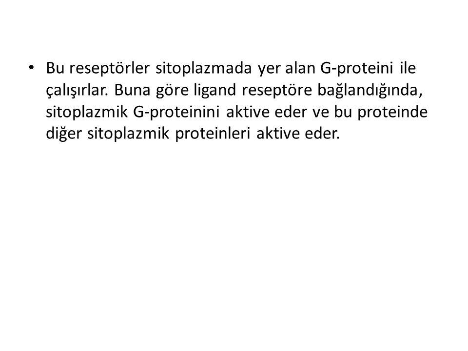 Bu reseptörler sitoplazmada yer alan G-proteini ile çalışırlar. Buna göre ligand reseptöre bağlandığında, sitoplazmik G-proteinini aktive eder ve bu p