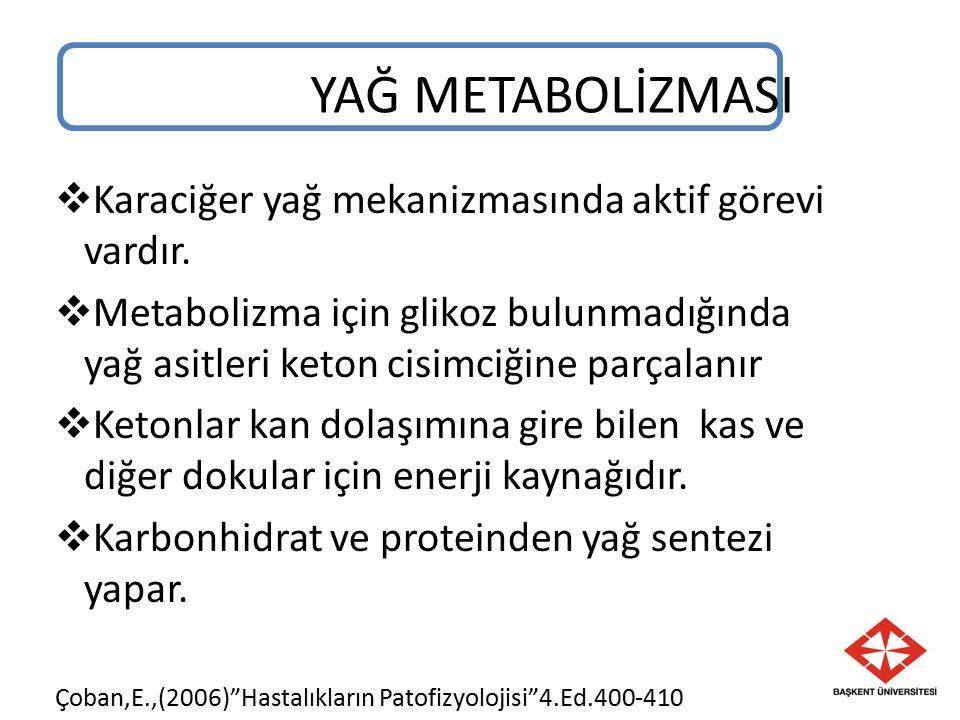 YAĞ METABOLİZMASI  Karaciğer yağ mekanizmasında aktif görevi vardır.  Metabolizma için glikoz bulunmadığında yağ asitleri keton cisimciğine parçalan