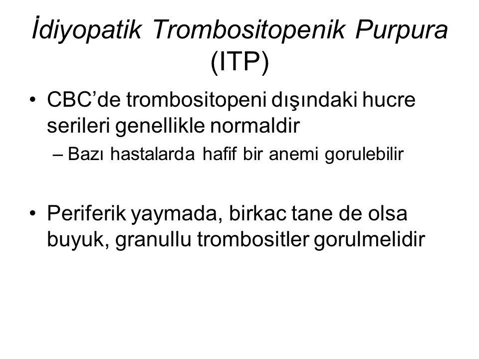 CBC'de trombositopeni dışındaki hucre serileri genellikle normaldir –Bazı hastalarda hafif bir anemi gorulebilir Periferik yaymada, birkac tane de ols