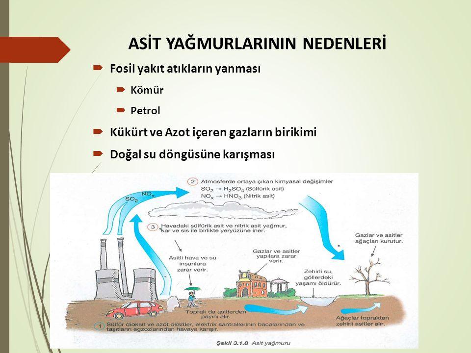 ASİT YAĞMURLARININ NEDENLERİ  Fosil yakıt atıkların yanması  Kömür  Petrol  Kükürt ve Azot içeren gazların birikimi  Doğal su döngüsüne karışması