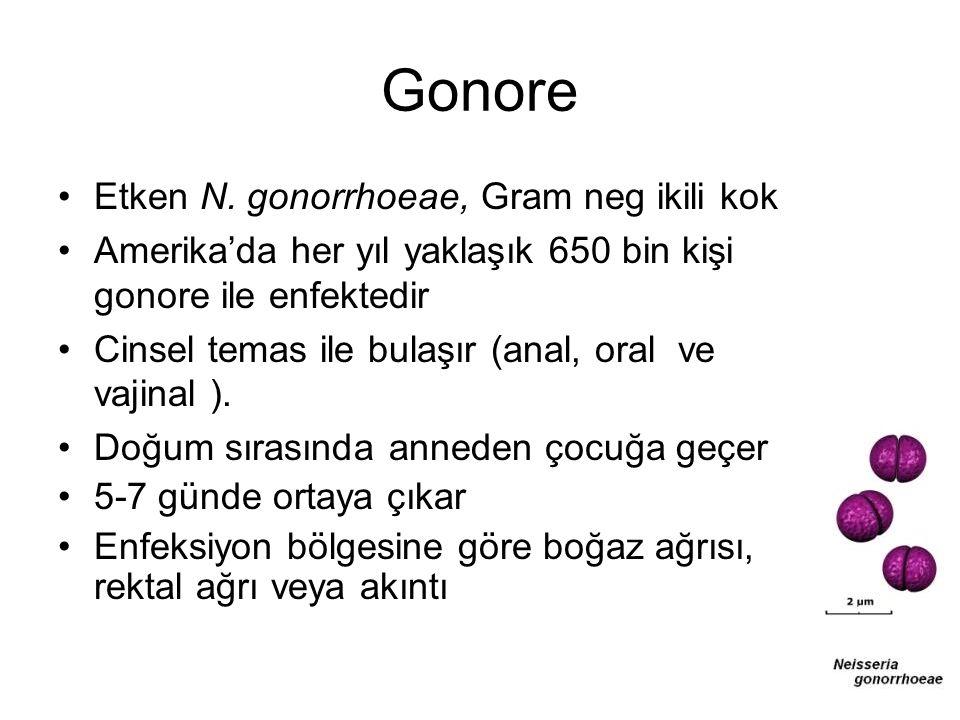 Gonore Etken N. gonorrhoeae, Gram neg ikili kok Amerika'da her yıl yaklaşık 650 bin kişi gonore ile enfektedir Cinsel temas ile bulaşır (anal, oral ve