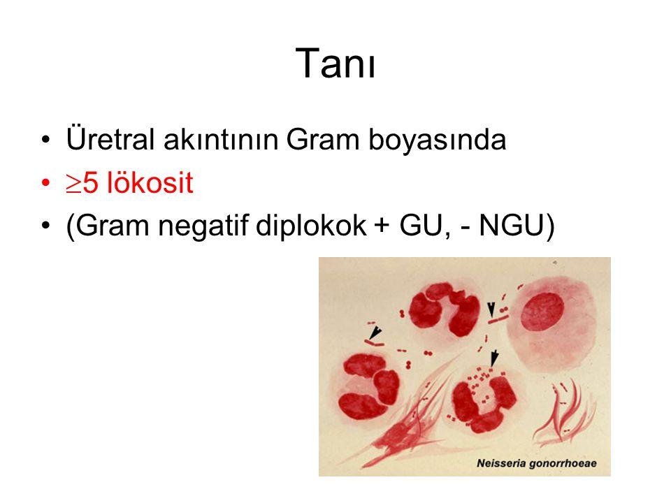 Tanı Üretral akıntının Gram boyasında  5 lökosit (Gram negatif diplokok + GU, - NGU)
