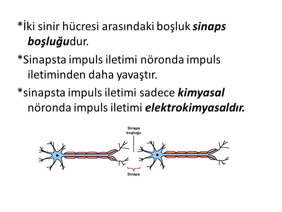 *İki sinir hücresi arasındaki boşluk sinaps boşluğudur.