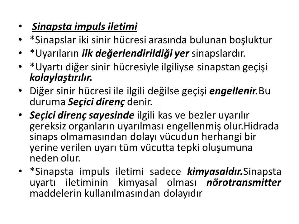 Sinapsta impuls iletimi *Sinapslar iki sinir hücresi arasında bulunan boşluktur *Uyarıların ilk değerlendirildiği yer sinapslardır.