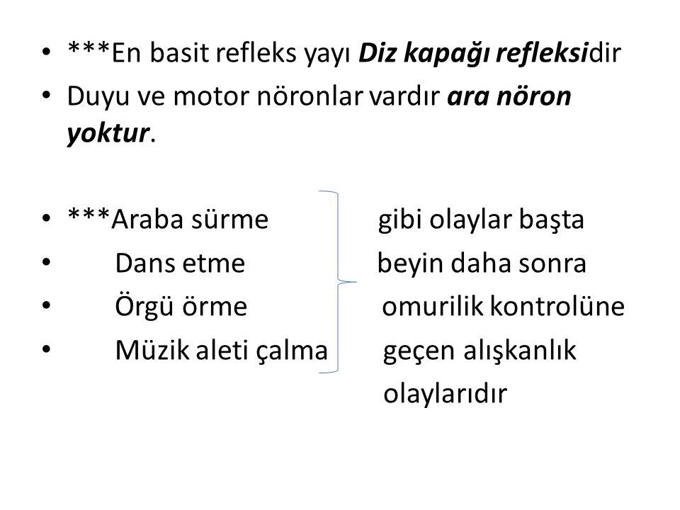 ***En basit refleks yayı Diz kapağı refleksidir Duyu ve motor nöronlar vardır ara nöron yoktur.