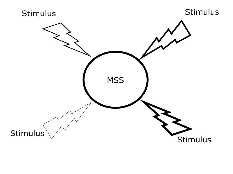 Stimulus MSS Stimulus