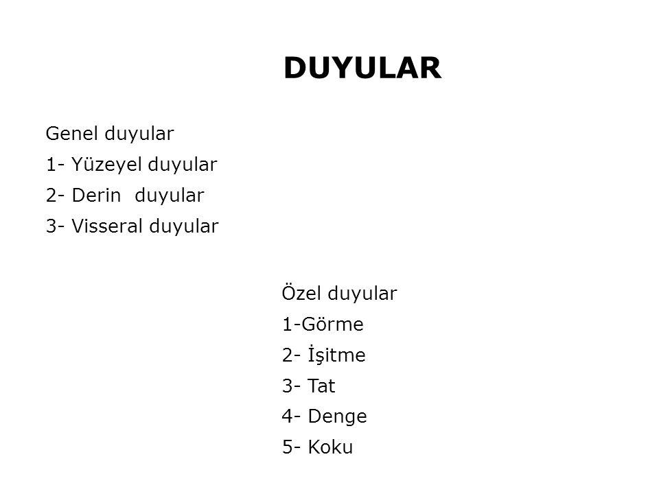 Genel duyular 1- Yüzeyel duyular 2- Derin duyular 3- Visseral duyular Özel duyular 1-Görme 2- İşitme 3- Tat 4- Denge 5- Koku DUYULAR