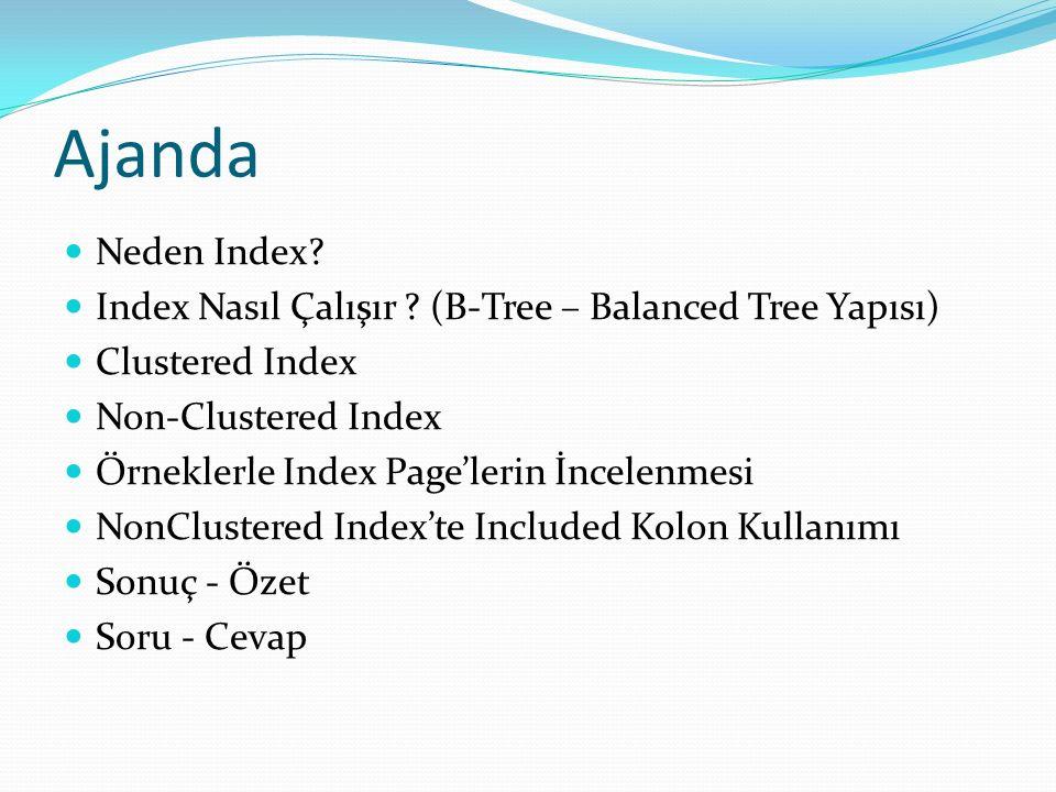 Ajanda Neden Index. Index Nasıl Çalışır .