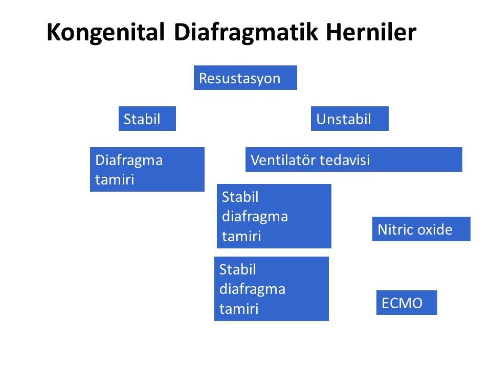 Kongenital Diafragmatik Herniler Resustasyon StabilUnstabil Ventilatör tedavisi Stabil diafragma tamiri Nitric oxide ECMO Stabil diafragma tamiri Diaf
