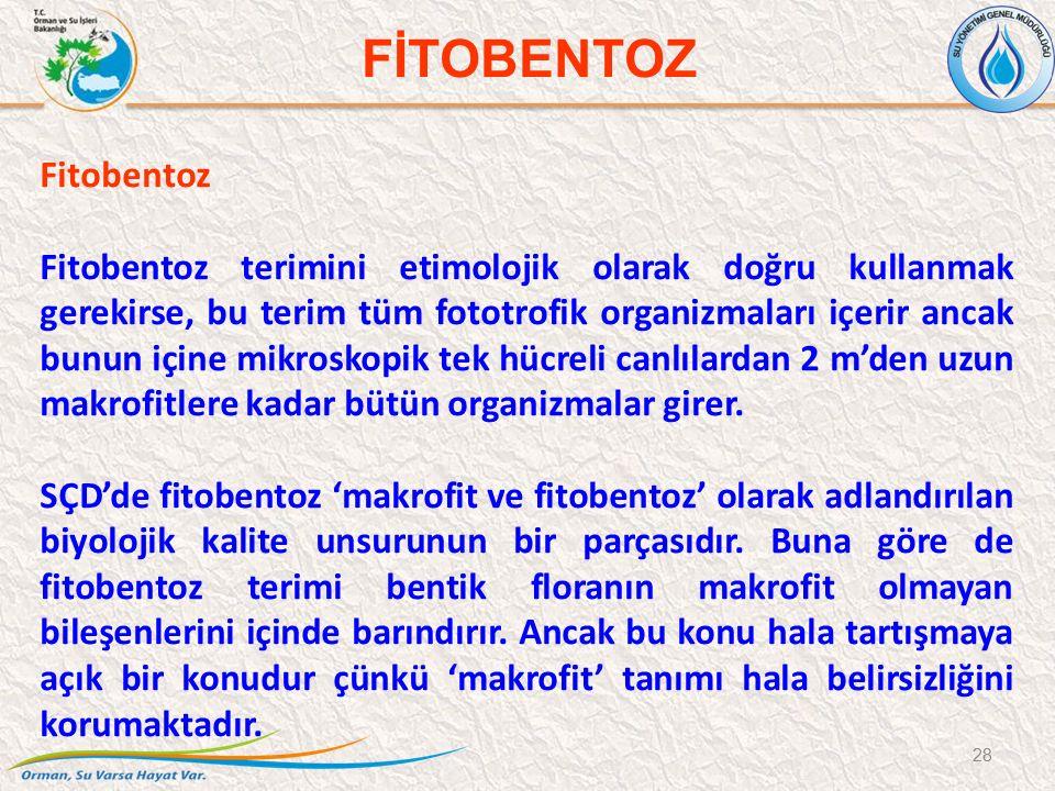 Fitobentoz Fitobentoz terimini etimolojik olarak doğru kullanmak gerekirse, bu terim tüm fototrofik organizmaları içerir ancak bunun içine mikroskopik