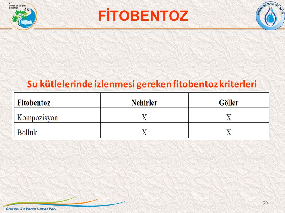 Su kütlelerinde izlenmesi gereken fitobentoz kriterleri 29 FİTOBENTOZ