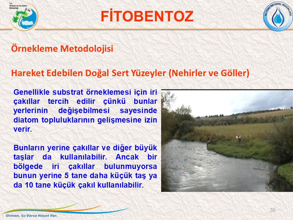 Örnekleme Metodolojisi Hareket Edebilen Doğal Sert Yüzeyler (Nehirler ve Göller) 35 FİTOBENTOZ Genellikle substrat örneklemesi için iri çakıllar tercih edilir çünkü bunlar yerlerinin değişebilmesi sayesinde diatom topluluklarının gelişmesine izin verir.